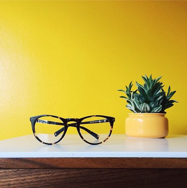 warby_parker_summer_2014_accessories_optical_lens_frames